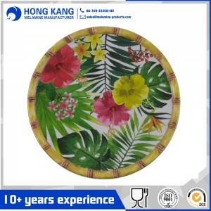 9inch melamine meal plate